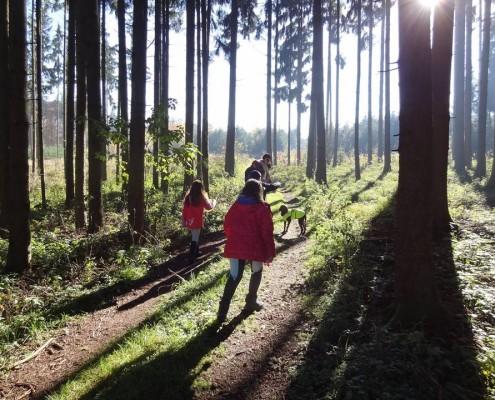 Abenteuerferien auf dem Schafflerhof Herbst 2015_3_Echo EV